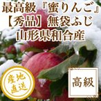 りんご フルーツ Fruits サンふじ 秀品 山形県和合産 蜜りんご 特選5kg箱18〜20個入り 産地直送 送料無料 フルーツギフト