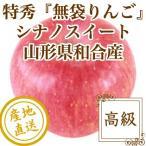 りんご フルーツ Fruits シナノスイート 特秀 山形県和合産 無袋りんご 特選5kg箱18個入り 産地直送 送料無料 フルーツギフト