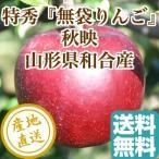 りんご フルーツ Fruits 秋映 特秀 山形県和合産 無袋りんご 特選3kg箱9個入り 産地直送 送料無料 フルーツギフト