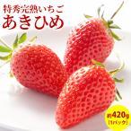 いちご フルーツ fruits 章姫 あきひめ 特選 完熟 ギフト 贈答用1パック入り箱 約420g 産地直送 送料無料