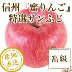 お歳暮 御歳暮 ギフト りんご フルーツ Fruits サンふじ 秀品 長野県産 蜜りんご 特選5kg箱15〜20個入り 産地直送 送料無料 フルーツギフト