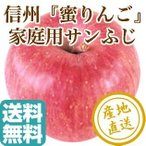 りんご フルーツ Fruits サンふじ 蜜りんご 長野県産 家庭用 10kg箱 30〜40個入 産地直送 送料無料