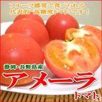 トマト アメーラトマト 1kg  静岡・長野産 とまと お取り寄せ フルーツトマト 甘いトマト プチトマト