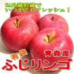 (りんご 林檎 アップル) 送料無料 お試し ふじ りンゴ 約5kg 小玉23〜25個入り  CA貯蔵 青森産 有袋ふじ クール便 富士 送料込み