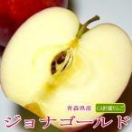 りんご ジョナゴールド 約10kg 大玉 28〜32個入り CA貯蔵 青森産|りんご 林檎 アップル パイ 青森りんご