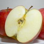 ジョナゴールドりんご 約10kg 大玉 28〜32個入り 岩手産 |林檎 リンゴ アップル パイ 10キロ 大きいリンゴ