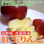 りんご 紅玉リンゴ こうぎょくりんご 約10kg 小玉 46〜50個入り 青森・長野産 アップルパイ 林檎 リンゴジャム