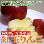 りんご 紅玉リンゴ こうぎょくりんご 約5kg 中玉 18〜20個入り 青森・長野産 アップルパイ リンゴジャム 林檎