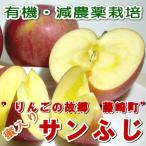 青森産 藤崎町 マル組りんご園 の サンふじりんご  5kg 中玉18〜20個入り
