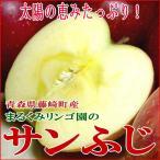 送料無料! 青森産 藤崎町 まるくみりんご園 のサンふじ 訳あり  5kg 18〜25個入り