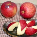 りんご 世界一リンゴ せかいいちりんご 約5kg 超大玉9〜10個入り 青森産 (りんご リンゴ 林檎) 産地箱  お取り寄せ