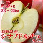 りんご シナノドルチェりんご 約5kg 小玉23〜25個入り  長野産 糖度14〜15度  信濃リンゴ 林檎 アップル