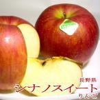 りんご 信濃高原の シナノスイートリンゴ 約10kg 中玉 36〜40個入り 長野産 | アップル 林檎 10キロ 秋ギフト