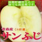 送料無料 訳あり サンふじリンゴ CA貯蔵 青森産 5kg  中玉 18〜20個入り  林檎 りんご アップル お取り寄せ 青森リンゴ