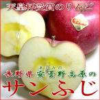 安曇野 あづみの 高原のサンふじリンゴ 5kg 中玉18�20個入り 長野産 お歳暮 御歳暮
