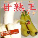 バナナ 甘熟王バナナ かんじゅくおうばなな  6パック入り 4〜5房/1パック フィリピン産  高級 フルーツ ばなな 完熟王