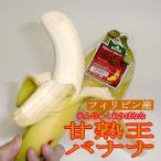 バナナ 甘熟王バナナ かんじゅくおうばなな  約6kg 9パック入り 4〜5房/1パック フィリピン産