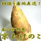 tobaisa_central-kyoyasai-kyotakenoko-r2ksan