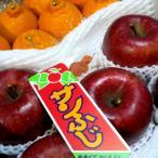 果物セット しらぬひ 約1.6kg 8個前後&サンふじリンゴ 中玉5個セット 果物ゼリー付き 送料無料|送料込みフルーツ福袋セット  フルーツギフト