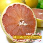 完熟グレープフルーツ 王冠(ゴールデンクラウン)赤肉 大玉 6個入り アメリカ産 フロリダ 糖度11度以上