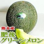 メロン 肥後グリーンメロン ひごぐりーんめろん 3Lサイズ 4個入り 熊本産|高級メロン ギフト プレゼント 緑肉メロン