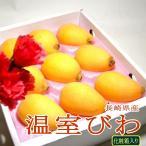 長崎産  高級温室びわ 茂木ビワ  2Lサイズ 大玉9個入り化粧箱