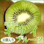 キウイ 国産 グリーン キウイフルーツ 緑肉 中玉 約3.6kg 33個入り 120g/1個  福岡産 キラキラキウイ