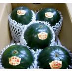 スイカ 大栄 小玉スイカ だいえいこだますいか 秋 Lサイズ 5個入り 鳥取産 小玉西瓜