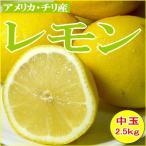レモン 中玉  アメリカ・チリ産 約2.5kg 中玉 21個入り 外国産 黄色いレモン