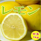 レモン 中玉  アメリカ・チリ産 約1kg 中玉  8個入り 外国産 黄色いレモン