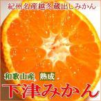 和歌山産 「蔵出し」熟成みかん 小粒 Sサイズ 5kg(55個前後入り)