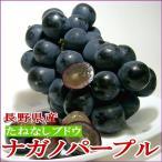 ぶどう 種無し ナガノパープル 約2kg 4〜6房前後入り 長野産 皮ごと食べられるたねなしブドウ