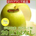 20世紀梨  京たんご梨  約5kg 京都産 特大サイズ 10〜12個入り  二十世紀梨 青梨 和梨
