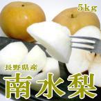 南水梨  なんすいなし  約5kg 大玉 12〜14個入り 長野産 赤梨 ナシ