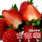 黒いちご 古都華イチゴ ことかいちご Mサイズ 20粒/1パック 2パック入り箱 奈良産|苺 イチゴ ストロベリー