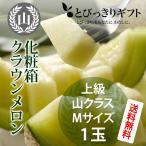 静岡県産 クラウンメロン 山クラス 化粧箱 Mサイズ 1玉 1.3kg
