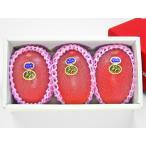 【JA宮崎中央限定】宮崎県産マンゴー 太陽のタマゴ 青秀 高級化粧箱入 2L×3玉