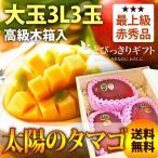 【ギフトに最適】JA宮崎中央限定マンゴー 太陽のタマゴ 赤秀 高級木箱入 3L×3玉