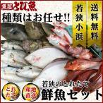 鮮魚セット 海産物 セット 詰め合わせ (到着後レビューを書いて送料無料)