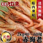【送料無料】天然赤エビ2kg(約40/60尾) アルゼンチン赤えび 刺身