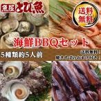 【豪華!】 海鮮バーベキューセット サザエ えび イカ カキ(むき身) 約5人前