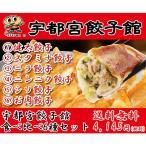 宇都宮餃子館 食べ比べ6種セット[T8]