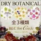 BLC for CORDE ドライボタニカル 押し花ネイル・レジンアクセ用ドライフラワー