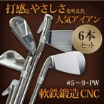 CNC軟鉄鍛造 アイアンヘッド キャビティバック 6個セット TEAMTOHO ゴルフクラブ