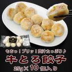 牛とろ餃子(10個入り) [加熱用]