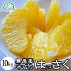 はっさく(木成り)(送料無料)  (減農薬)(有機)10kg