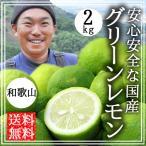 国産レモン(グリーンレモン)2kg (送料無料)(無農薬) (有機栽培)(和歌山)