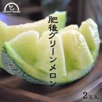 メロン 果物 肥後グリーン 送料無料 5kg 2玉入 フルーツ お中元 果物 ギフト 農園直送 熊本 岡山農園