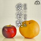 梨3kg 愛宕梨(あたご梨)(送料無料)