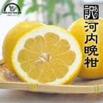河内晩柑 送料無料 20kg 宇和ゴールド ジューシーオレンジ フルーツ 果物 柑橘 愛媛 八幡浜